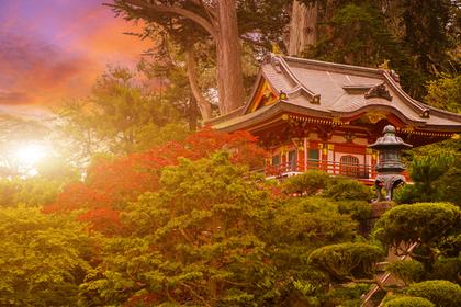 日があたる神社