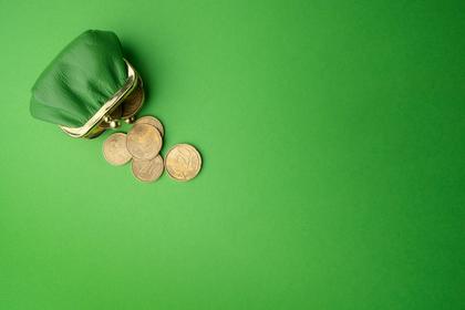 緑の小銭入れ