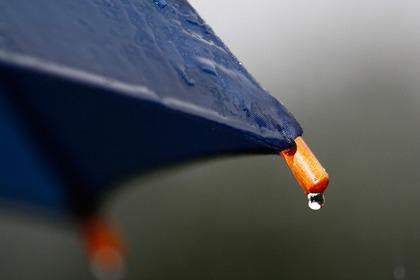 春雨を傘で表現