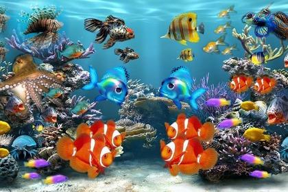 Middle aquarium 54e8d1464f 1280