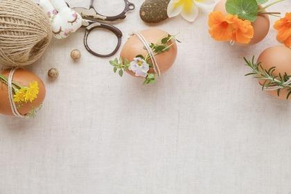卵に付けられた花