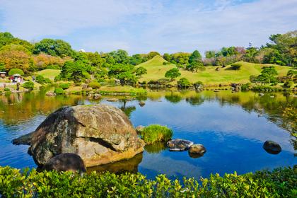 池の見える景色
